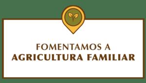 ícones quintana-04